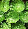 ДИАМАНТИНАС - семена салата тип Айсберг дражированные, 1 000 семян, Rijk Zwaan
