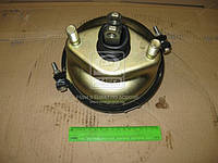 Камера тормозная передний тип 24 КАМАЗ (производитель РААЗ) 100-3519210