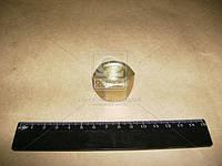 Гайка М22 стремянки (производитель АвтоКрАЗ) 348002