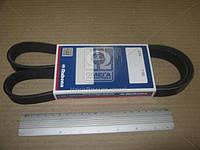 Ремень 6РК-1190 вентилятора УАЗ 452 (производитель Rubena) 6PK-1190