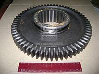 Шестерня 1-передачи вала вторичного ЯМЗ 236 Z=62 (производитель Россия) 236-1701112