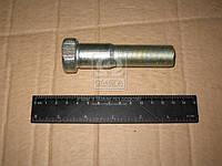 Болт М22х95 колеса полуприцепа ЕВРО (производитель БААЗ) 9919-3104050