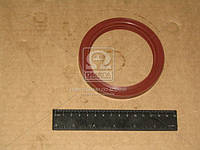 Сальник редуктора моста заднего МАЗ красный 85х110-2,2 (производитель Украина) 5336-2402052