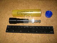 Плунжерная пара МАЗ в контейнере d=10 (производитель ЯЗДА) 60.1111074-31