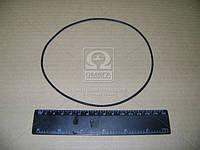 Кольцо уплотнительное ЯМЗ 236 под гильзу (150-155-25-2-5) (производитель ЯМЗ) 25 3111 6594