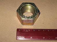 Гайка стремянки М27х2 заднего рессоры (производитель Беларусь) 375059