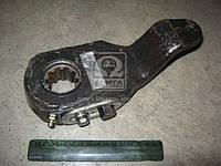 Рычаг регулировачный узкий шлиц 10х31х38 (производитель ТАиМ) 64221-3501135