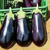 КЛАССИК F1  - семена баклажана, CLAUSE 5 грамм