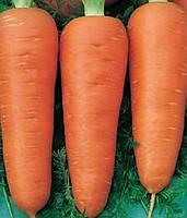Семена моркови Талисман,10 г, MoravoSeeds (Моравосид), Чехия