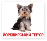 Породи собак. Карточки Домана