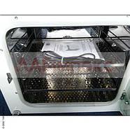 Термостат суховоздушный лабораторный СТ-50 (на 54 л, Украина), фото 5