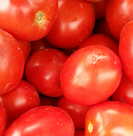 ФОРТИКС F1 - семена томата, Syngenta, фото 1