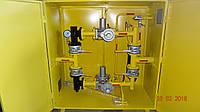 Установка газовая шкафная — УГШ-F-2РДНК-1000 (ГРПШ,ШГРП,ШРП,ГРП,ШП)
