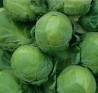 Касио семена капусты брюссельска, фото 1