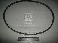 Ремень 11х10х1180 зубчатый помпа ЯМЗ 8401, ЯМЗ 238АК (производитель ЯРТ) 11х10х1180 зуб