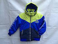 Куртка для мальчика демисезонная 8-12 лет,лимонный синий темно синий
