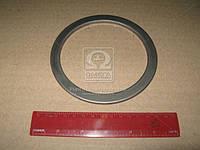 Маслоотражатель вала коленчатого заднего Д 260 (производитель ММЗ) 260-1005044