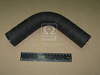 Патрубок радиатора МТЗ 822,922,923,1005,1025 верхний (производитель Беларусь) 85-1303001