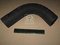 Патрубок радиатора МТЗ 1221/1522 верхний (производитель Беларусь) 142-1303010
