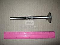 Клапан выпускной Д 240, 243, 245 (производитель Китай) 240-1007015