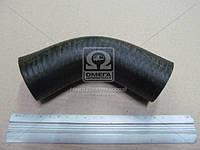 Патрубок радиатора МТЗ L=130 нижний (производитель Украина) 50-1303062-Б2
