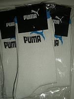 Шкарпетки чоловічі. р. 40-42. Білі