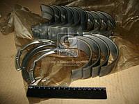 Вкладыши коренные Р2 СМД 31 АО6-1  (производитель ЗПС, г.Тамбов) А23.01-98-31сбА