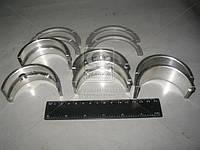 Вкладыши коренные Р4 Д 21 АО20-1 (производитель ЗПС, г.Тамбов) А23.01-78-21сбА