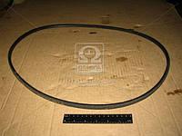 Ремень А-1500 (производитель ЯРТ) А-1500