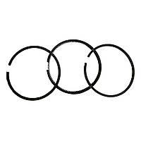 Набор поршневых колец ДД170