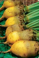Cвекла кормовая желтая  Урсус Поли  весом 1 кг Польша, фото 1
