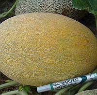 МАЕ  F1  - семена дыни, 1 000 семян, CLAUSE