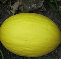 ФОРБАН F1  - семена дыни, 1 000 семян, CLAUSE, фото 1