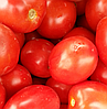 ФОРТИКС F1 - семена томата детерминантного, 5 000 семян, Syngenta