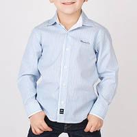 Нарядная рубашка для мальчика классическая в полоску, длинный рукав, на груди вышито Brums Co мал. голубой 10