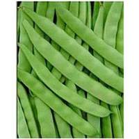 Семена фасоли спаржевой Джина , 0,5 кг, May Seeds (Мей Сид), Турция