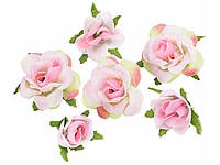 Rosenköpfe, rosa 2,5 см