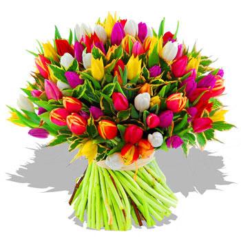 Цветы оптом харьков тюльпаны, купить цветы под куполом