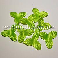 Чашелистик трехлистный,  3 см, св.зеленый, 10шт.