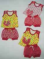 Летний костюмчик футболка и шортики для девочки от 6месяцев до 2 лет по оптовым ценам