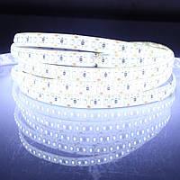 Dilux - Светодиодная лента SMD 3014 204LED/m, негерметичная IP20 Dilux, Китай, Белый, Белый, Теплый белый