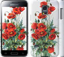 "Чехол на Samsung Galaxy S5 mini G800H Маки ""523c-44"""