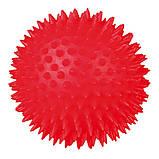 Игрушка для собак Trixie Мяч игольчатый с пищалкой, винил (цвета в ассортименте, фото 2