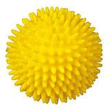Игрушка для собак Trixie Мяч игольчатый с пищалкой, винил (цвета в ассортименте, фото 4