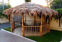 Пальмовый лист, фото 1