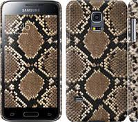 "Чехол на Samsung Galaxy S5 mini G800H Кожа змеи ""901c-44"""