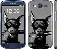 "Чехол на Samsung Galaxy S3 i9300 Доберман ""2745c-11"""