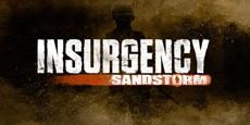 Шутер Insurgency: Sandstorm выйдет на PC и консолях в следующем году