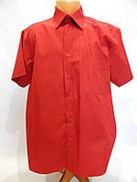 051КР Мужская рубашка с коротким рукавом US BASIC, фото 1