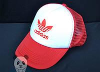 Кепки Adidas Originals Trucker Cap (Дропшиппинг)